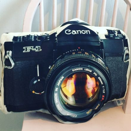 Large Fun Canon Camera Cushion